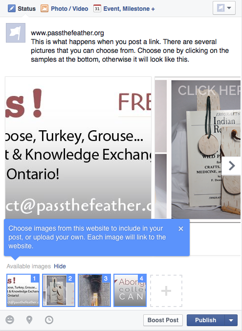 Pass the Feather, social media tips