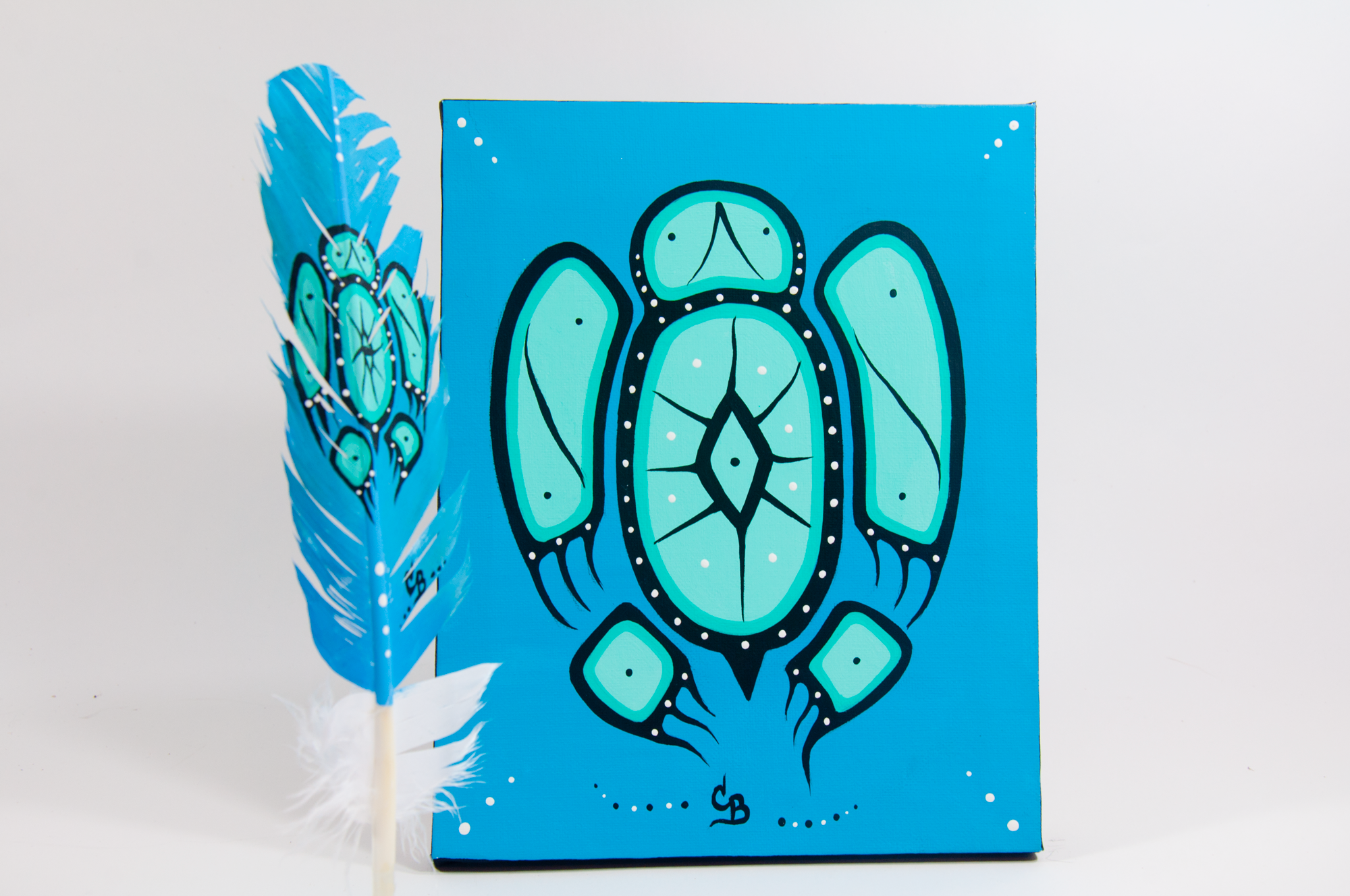 Chelsea Brooks, painted feathers, aboriginal arts collective of canada, pass the feather, feather art, aboriginal artwork, turtle painting